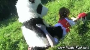 Group Panda Action